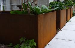 Corten steel vege planter