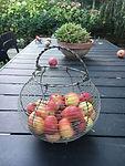 Edible vegetable garden designs inspiration ideas