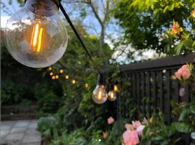 Lights in the garden