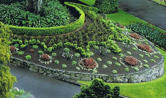 Bringing the WOW factor to the Wellington Botanic Gardens