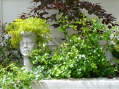 Lady statue with succulent hair