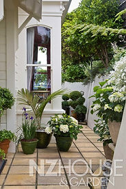 A beautiful arrangement of pots at the front door, with palms, iris, white hydrangeas & topiaries
