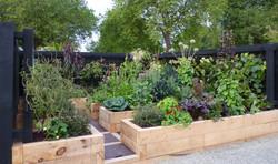 Contemporary style vege garden