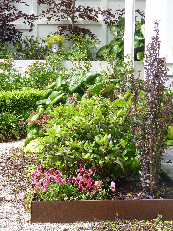 Corten steel garden edging & plantin