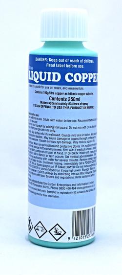 Buxus Spray - Liquid Copper