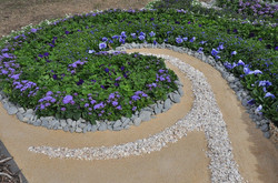 Swirls & eddies of flowers & shell