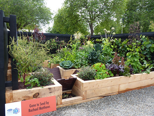 Gone to Seed - a sustainable vege garden designed for Tom & Barbara Good