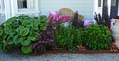 Beautiful planting combinations