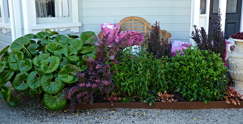 Beautiful planting combinations