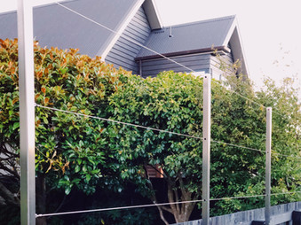 PLeached hedging for privacy & shelter around the nursery