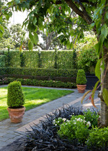 A path around the outside makes for crisp lawn edging