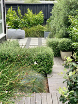 Landscape design Seatoun