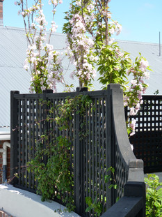 Black trellis boundary fences