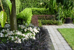 Formal layered hedge on Hobson