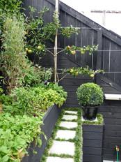Fruit & vege garden
