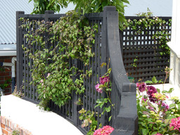 Black trellis covered in light pink clematis