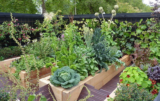 Outdoor living: smart ways with small gardens