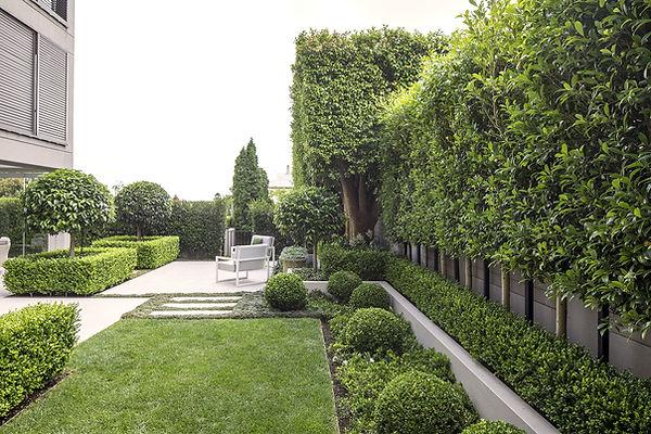 remuera-rd-garden_7884.jpeg