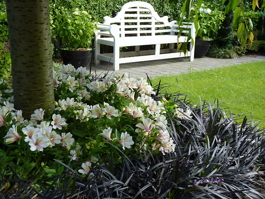 Keeping to the colour scheme and adding a luxurious Lutyens seat give the main area a formal look as do the white Hydrangeas and multiple hedges