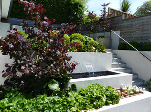 Seasonal & structural planting for small gardens