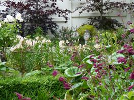 Beautiful flowers & foliage