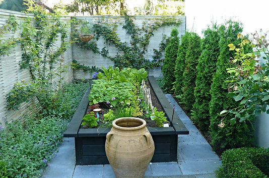 A raised bed built from kitset fits the space perfectly