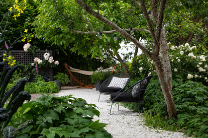 Woodland feel under the fruit & nut trees