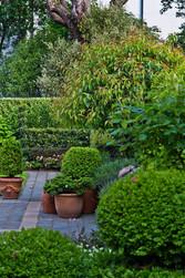 Photo Paul McCredie for NZ House & Garden | HEDGE Garden Design & Nursery