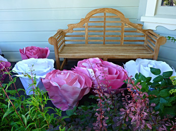 Paper roses tone perfectly with foliage in the front garden