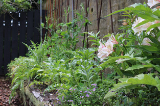 Climbing frames, mixed vegetables & picking flowers