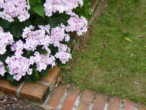 Brick, lawn edging & deck detailing