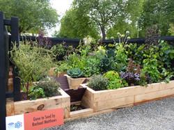 Award winning vegetable garden