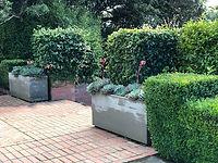 Hedges & green architecture  garden designs inspiration ideas