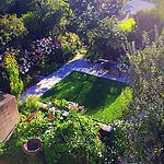 Urban organic family garden in Kelburn