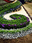 Award winning gardens designed by HEDGE Garden Design & Nursery