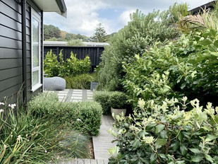 Garden & landscaping design Seatoun