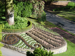 Koru Parterre garden of innovation
