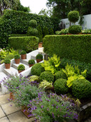 Layers of interest - hedges, pots, balls, pots, foliage & flowers