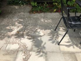 Chestnut imprints on concrete pavers (temporary)