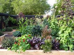 Vege garden sustainable practices