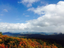 Leaves changing at Yellow Mountain