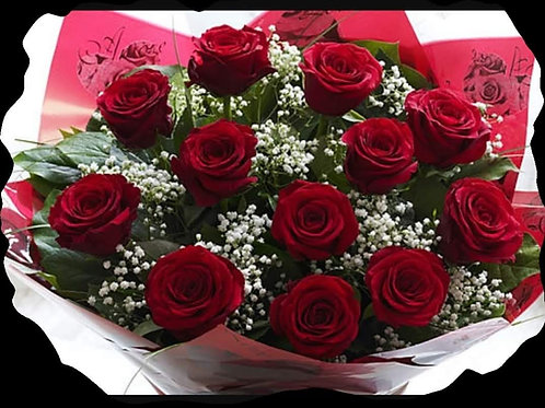 12 Red Roses and Gyp