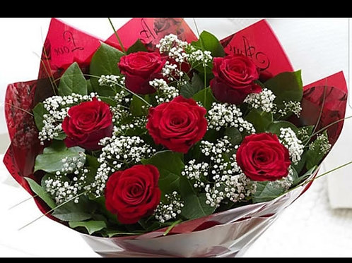 6 Red Roses and Gyp