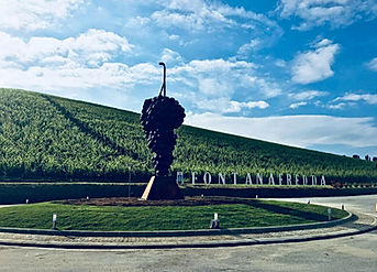 Giuseppe Carta_Monumento al Nebbiolo_Fon