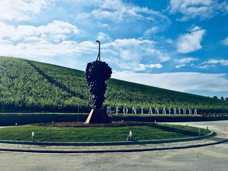 A Fontanafredda il monumento al Nebbiolo creato da Giuseppe Carta