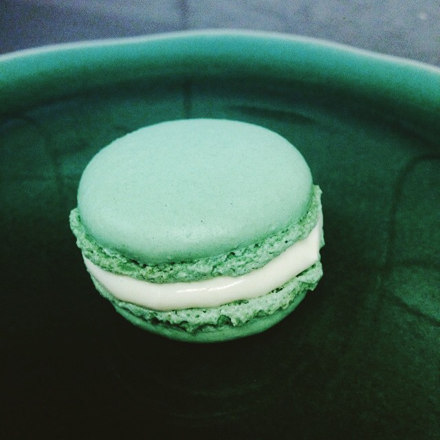 Instagram - This plate was made for this macaroon @mattrobinsons @bluebirdchelse