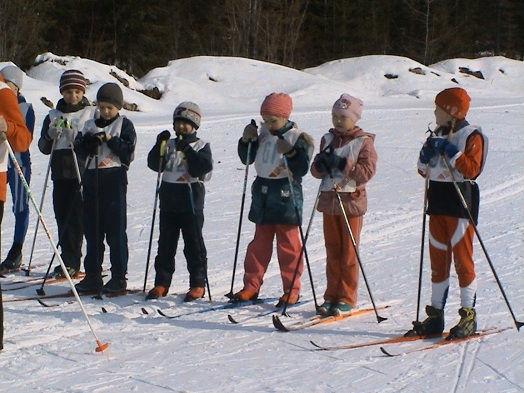 Наши лыжники
