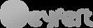 Seyfert_logo_gray.png