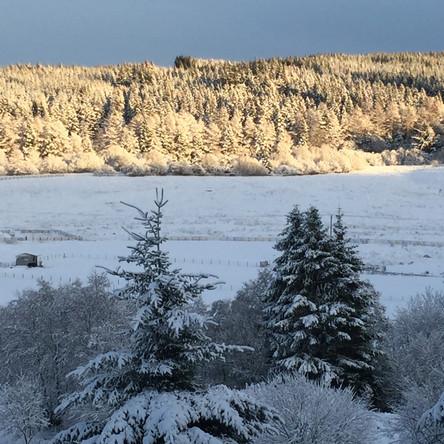 Northumberland's Narnia