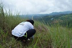 Environment - Haribon.jpg